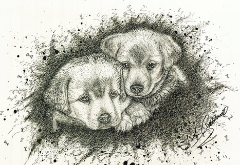 Puppy Love - Pen and Ink