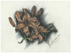 Lilies- Mixed Media .jpg