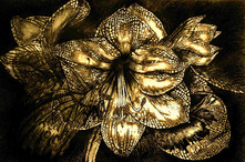 Iron Butterfly in Gold - colored ink and pen.JPG