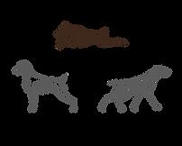 SilverBay Logo