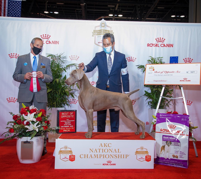 Royal Canine Orlando Florida