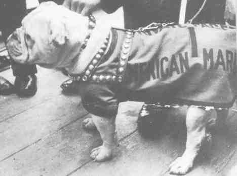 Private Pagett USMC
