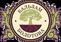logo_Bolotov.png