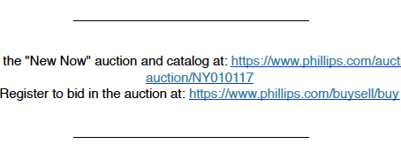 HVCCA Art Auction at Phillips
