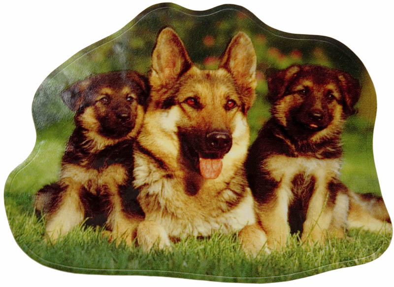 German Shepherds Sticker