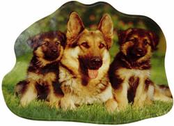 German Shepherds Sticker