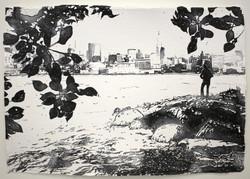 Hoboken Dreamer