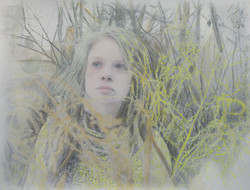 Priscilla in the Woods