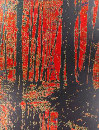 Waldflimmern