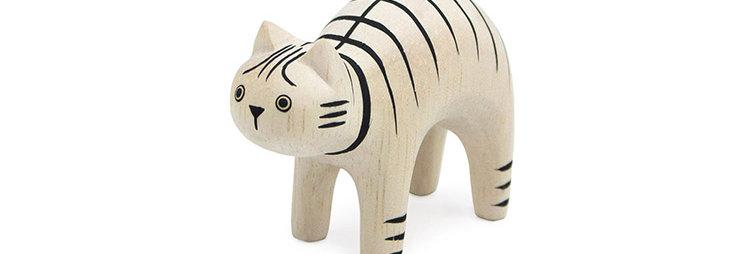Tabby Cat חתול טאבי