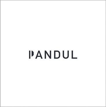 logos pandul.jpg