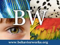BehaviorWorksLogo.png