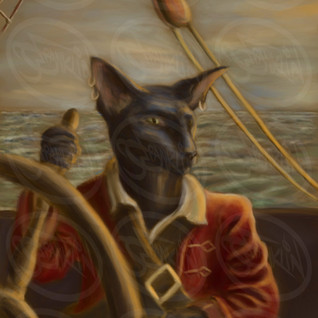 cat_pirate_.jpg