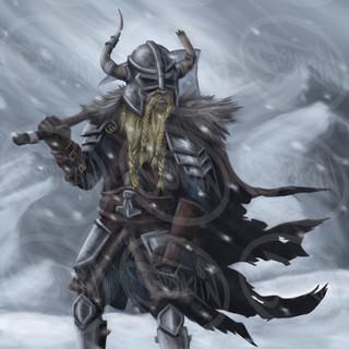 viking_.jpg