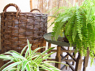 Garden styling ובעברית – קישוטים בגינה