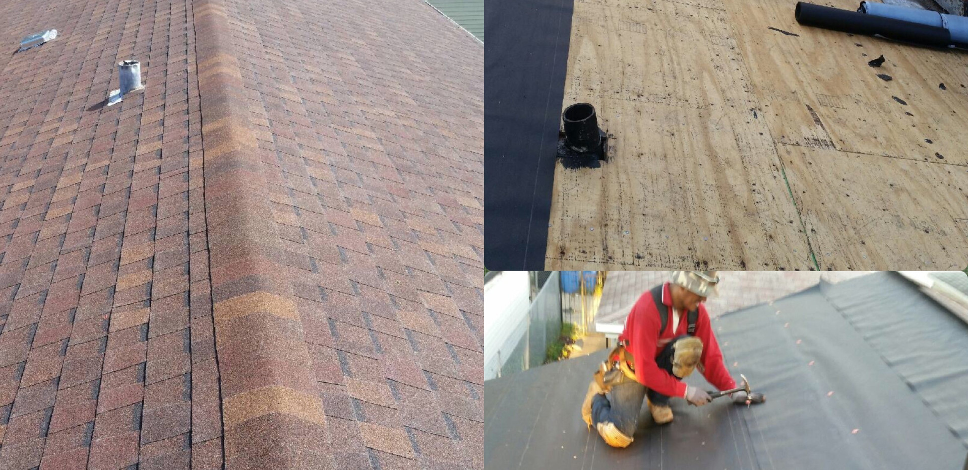 roof83840.jpg
