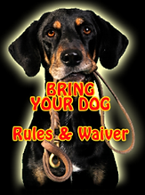 bring your dog.png