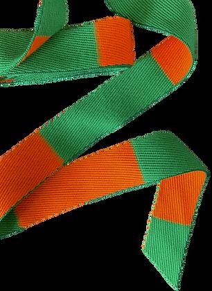 Rouleau ceinture Orange/Verte Judo