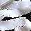 Thumbnail: Rouleau ceinture Blanche Judo