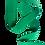 Thumbnail: Rouleau ceinture Verte Judo