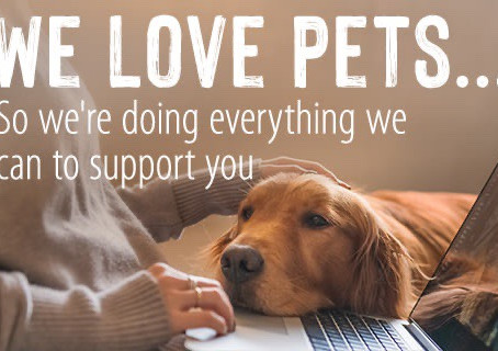 We love your pets......