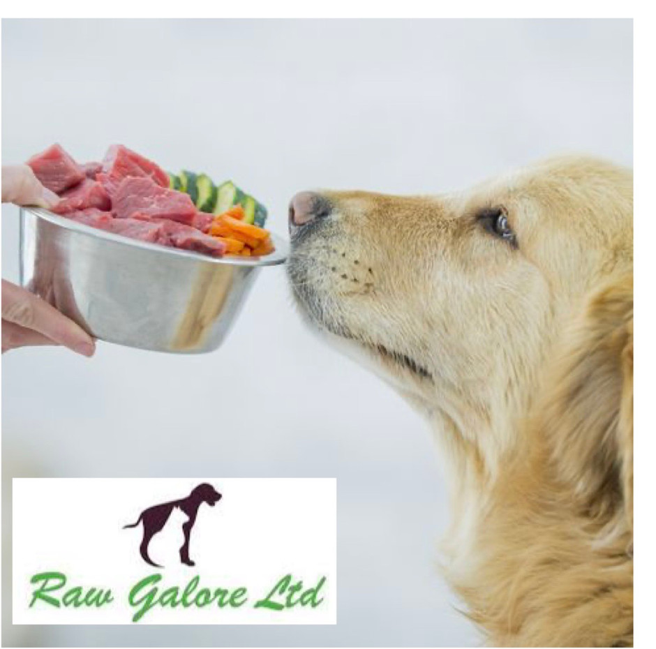 Is a raw diet the key to canine and feline longevity?