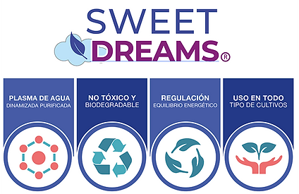 SweetDreams.png