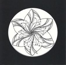 MOOKA STAR- 6x6.jpg