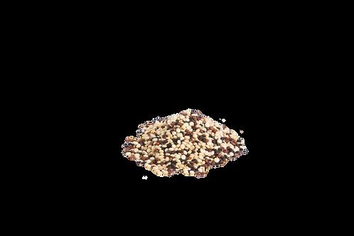 Quinoa Tricolore 500g im Beutel