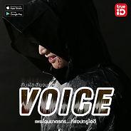 2voice_svod.jpg