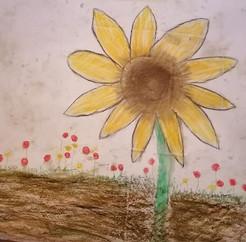 fleur d'épanouissement - séance individuelle adulte