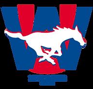 WUES Logo Website1.PNG