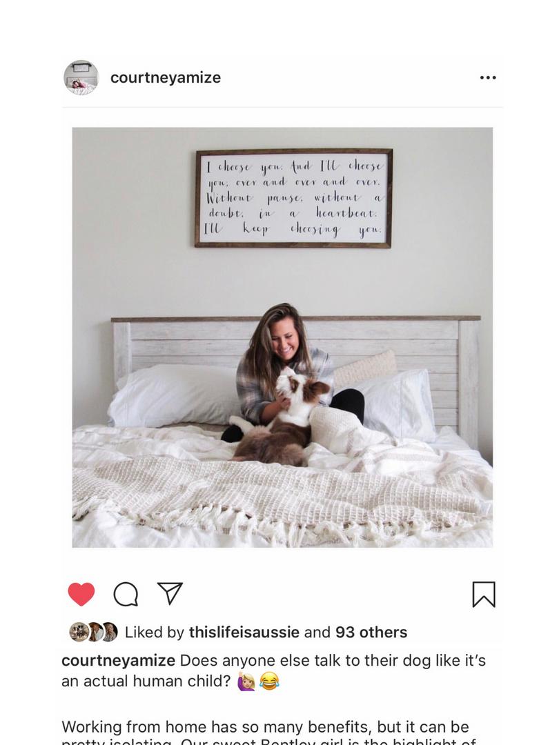 Life of a Dog Mom