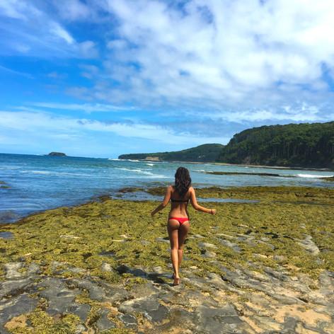 pebbly-beach.jpg