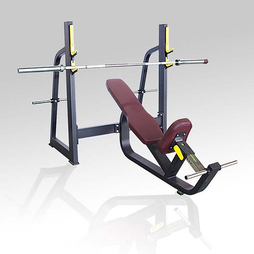 Olympic Bench Incline