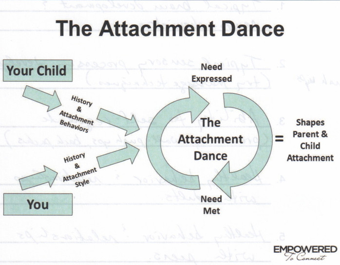Building a Strong Attachment