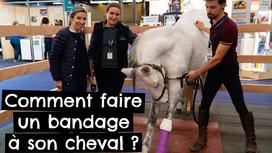 Comment faire un bandage à son cheval ?