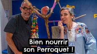 Bien nourrir son Perroquet !