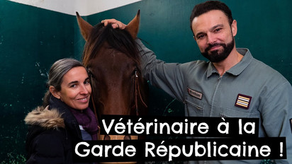 Vétérinaire à la Garde Républicaine !