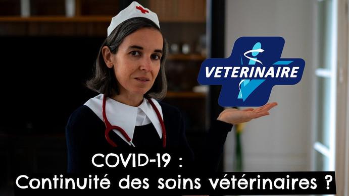 COVID-19 : Continuité des soins vétérinaires ?