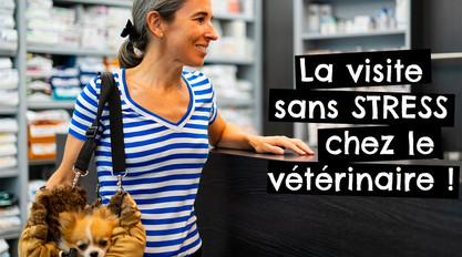 La visite sans STRESS chez le vétérinaire !