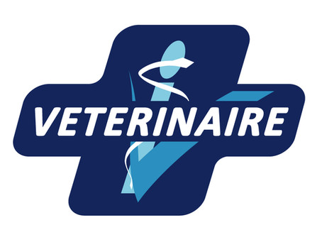 Les cliniques vétérinaires restent ouvertes !