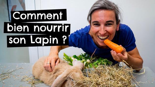 Comment bien nourrir son Lapin ?
