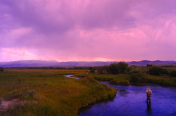 Odell Spring Creek
