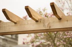 Cedar pergola detail