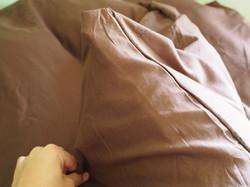 こだわりの寝具その➀ 羽毛布団