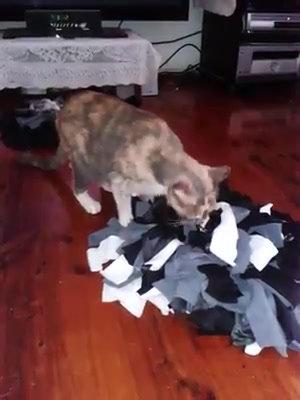 Cat Snuffle Mat