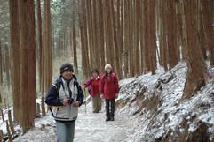 登山23.JPG