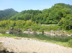 長良川24.JPG
