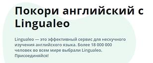lingualeo.png